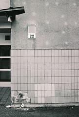 Our street (olovsebastian) Tags: film filmphotography analog analogue analoguephotography analogphotography ilfordsuperxp2400 ilfordxp2 xp2 nikon nikonf501