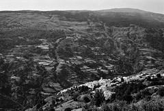 Capileira, Las Alpujarras (Mister Electron) Tags: 125asa 35mm 35mmfilm bw espana europe ilfordfp4plus lasalpujarras leicam2 leitzelmar50mmf28 mountains southerneurope spain analogue blackwhite digitised film landscape monochrome mountainside negative pancakelens plustek8200i rangefinder silverhalide capileira