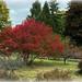 The Allure Of Autumn