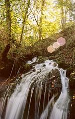 Analog Falls Nikon FA (Film: Kodak Ektar 100) (anzere03) Tags: tennessee longexposure waterfall ektar100 argentique analogphotography nikonfa nikon ishootfilm filmisnotdead