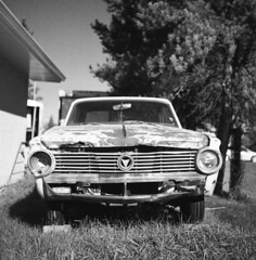 Rolleicord V / Rollei Retro 80s. (Fistfulofpowder) Tags: chrysler valiant abandoned alberta patina rust decay vehicle rollei retro 80s rolleicord v twin lens reflex tlr film 120 120mm medium format square 6x6 ddx yellow filter