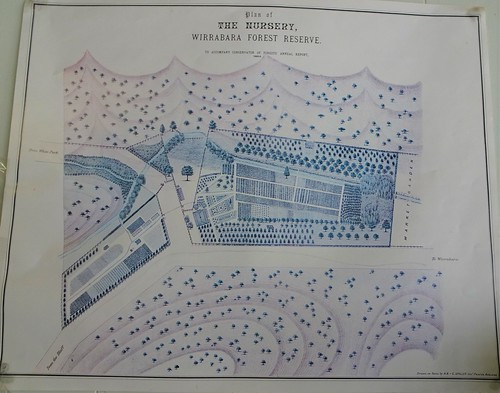 Wirrabara. Plan of the Forest nursery in 1885. Drawn for the Conservator of Forests. Sadly much of the forest was burnt in a bushfire in 2015. The  city centric Labor government decided not to replant the 1877 forests .