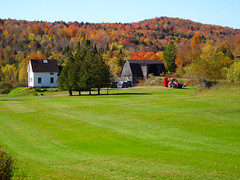 Rural Quebec (angelinas) Tags: countryside rural farms quebec paysages paesaggi landscapes autumn autunno automne travelovers easterntownships cantondelest canada outdoors fallfoliage fallcolors colours trees mountsutton mountains montagnes