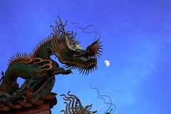台北市 慈惠堂 (沐均青) Tags: landscape scenery travel colorful blue black outside town countryside tamron clouds sky buildings city temple dragon statue religion taipei moon