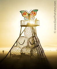 The Phoenix and The Butterfly A story of metamorphosis by Swig Miller (Dust To Ashes) Tags: the phoenix butterfly a story metamorphosis by swig miller burningmanfestival burningman2019 burningman metamorphoses theme burning man bm2019 2019 dust ashes dusttoashes wwwdusttoashesnet sculpture sculptures installation installations surreal playa desert nevada gerlach nv blackrockcity brc art burningmanart desertparty photography photos photo pictures ales wings sunrise sunset