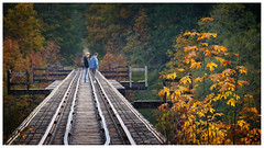 autumn drama (marneejill) Tags: railway tracks decomissioned qualicum beach bc fall autumn foliage leaves orange red yellow people two men boys perspective storytelling dramatic friends talking