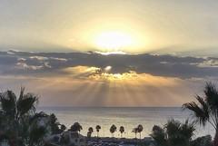 Beautiful start to the morning 😎 (Andreadm66) Tags: spain costadelsol fuengirola seascape sea palmtrees morning sunrise