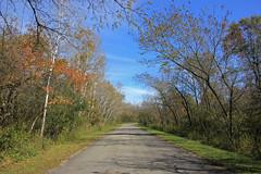 An Afternoon Walk . . . (doc030395) Tags: iowa hancockcounty pilotknob statepark camproad autumn october hiking afternoon peaceful