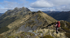 Mt Patriarch (Ruahine Tramper) Tags: newzealand tramping kahurangi mtpatriarch tussock trekking alpine arthur range cloud