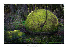 Deep In The Forest .... (Dominic Scott Photography) Tags: dominicscott sony ilce7rm3 gmaster sel2470gm newzealand boulders whitecliffs white cliff mangaweka manawatu ohingaiti green forest magical mystical