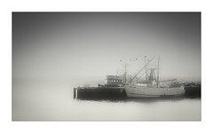 Morning Has Broken (Christina's World : updated bio) Tags: 2046 boats marina foggy misty blackandwhite mood monochrome landscape waves black white gray birds flying minimalistic composition pier frame highcontrast highkey topaz sandiego fishing fishingboat scenic california unitedstates bay morninglight morning sunrise kurtpeiser topclass exoticimage