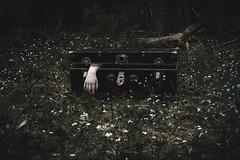 (Emily Boyer Photography) Tags: adirondacks adk adks creepy horror eerie conceptualphotography conceptual canon canonphotography canon5d dark woods forest hauntedforest tupperlake lightroom photography photoshop