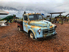 Dinosaur in the RearView! (Pennan_Brae) Tags: classic truck vintage dinosaur pickuptruck trex classictruck tyrannosaurus tyrannosaurusrex vintagetruck vintagestyle