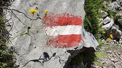 Traunstein - Austria (Been Around) Tags: traunstein upperaustria austria autriche wandern hiking berg österreich oö eu europe summer sommer alps alpen oberösterreich gmunden traunsee fahne flag natur weg wegweiser pfad mairalmsteig mairalmsteigtraunstein stein blume steig fels felsen rock june juni