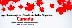 Canada openings world visa experts. check for more http://www.worldvisaexperts.com (worldvisaexperts.com) Tags: canada canadaday canadian greeting celebration flag national july 1867 red holiday history event 1st 1stofjuly patriotic independence country background canadaflag leaf memorial happy happycanadaday patriotism banner card header set