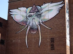 Cyclops.......Origin of the myth : One theory is that the Greeks found elephant skulls and saw them for the skulls of giants with one big eye in their foreheads (Wikipedia).(Graffiti shot taken at the quay of Hasselt, Belgium) (gilberteplessers) Tags: nature macro places travel landscape wildlife nationalgeographic water shadows natgeoyourshot yourshot instagram photooftheday nikon yourshotphotographer mercedesbenz mbfanphoto photography nikonphotography photographysouls nikonbelgium nikoneurope nikonartists nikonpost lensculturetalent yourshotnatgeo natgeoyourshotourfotoworldurbanarte urbanarte