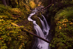 Fall Magic (Darkness of Light) Tags: washington olympic national park np sol duc falls colors canyon seattle tacoma pacific north west pnw sony a7r3 a7riii zeiss loxia format hitech firecrest cpl polarizer