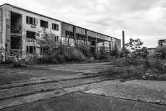 Werkhalle (Panasonikon) Tags: panasonikon sonya6000 canon1018 bw fabrik schornstein graffiti gebüsch lostplaces verfall industrie industry ruine niedergang explore sonyalpha ilce6000