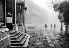 Misty Morning (photofitzp) Tags: bw blackandwhite fog italy light mist people venice slealingshadows