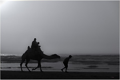 Camel Walk, Sidi Ifni (Marroc) (bit ramone) Tags: sidiifni marruecos áfrica camello camel bitramone travel viajes pentax pentaxk3ii walk dance dancing blancoynegro blackandwhite