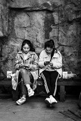 Siblings (Go-tea 郭天) Tags: chongqing républiquepopulairedechine sisters twins friends lady women young 2 together seated seat bench rock jacket sneakers phone mobile cell cellular cellphone headphone busy play playing data network screen shark tea pot box legs crossed street urban city outside outdoor people candid bw bnw black white blackwhite blackandwhite monochrome naturallight natural light asia asian china chinese canon eos 100d 24mm prime portrait symmetric mirror