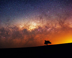 Milky Way at Quairading, Western Australia (inefekt69) Tags: milkyway quairading panorama stitched mosaic msice milky way cosmology southern hemisphere cosmos western australia dslr long exposure rural night photography nikon stars astronomy space galaxy astrophotography outdoor core great rift ancient sky 35mm d5500 landscape tree silhouette tracked ioptron skytracker lone