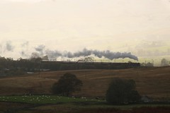 NOT WHAT I PLANNED (Malvern Firebrand) Tags: lms 462 8p 6201 princess elizabeth summit shap 121019 1z86 0710 london euston carlisle west coast railway company wcrc steam countryside rural cumbria scenic scenery landscape contrejour atmospheric pacific mainline wcml tebay 2019 trains railways transport vehicles outdoors