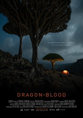 Dragon Blood (Marsel van Oosten) Tags: socotra island yemen marselvanoosten squiver camping wild camp tree clouds mood tent unesco adventure moonlight marmot endemic dragonblood mountains tourism expedition trekking hiking exploring exploration