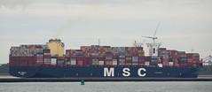 MSC ISABELLA (2019) (kees torn) Tags: mscisabella containerschepen tug bolugatowage smitcheetah beagle hoekvanholland europoort beerkanaal calandkanaal