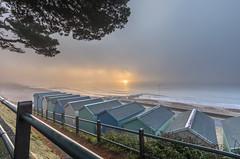 Misty Morning (nicklucas2) Tags: seascape beach mist sea sand seaside solent seaweed wave groyne avonbeach mudeford dorset
