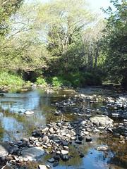 Shallow (Vicki.94) Tags: ireland irland dingleway peninsula wandern hiking nature natur water wasser stones steine kerry