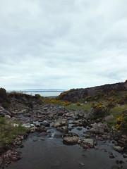 Stream (Vicki.94) Tags: ireland irland dingleway peninsula wandern hiking nature natur water wasser steine stones kerry