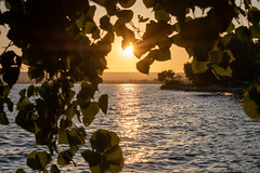 Lago di Bolsena (wendy_wendy) Tags: italy italie viterbo nature lake nikon nikond7500 bolensa lagodibolsena sunset