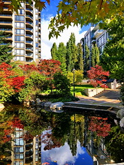 Two of everything (peggyhr) Tags: peggyhr reflections autumn pond colourful bushes trees buildings img6428a vancouver bc canada super~sixbronze☆stage1☆ dslrautofocuslevel2 frameit~level01~ dslrautofocuslevel3 dslrautofocuslevel4 thelooklevel1red dslrautofocuslevel5 50faves dslrautofocuslevel6 dslrautofocuslevel7 carolinasfarmfriends dslrautofocushalloffame