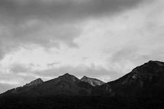 kp2019-41 (Vasily Ledovsky) Tags: sochi krasnaya polyana krasnodar krai voigtlander bessar canon ltm l39 m39 50mm 5018 f18 national park hiking
