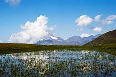kp2019-6 (Vasily Ledovsky) Tags: sochi krasnaya polyana krasnodar krai voigtlander bessar canon ltm l39 m39 50mm 5018 f18 national park hiking