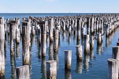 Remnants of a pier - another view (Marian Pollock) Tags: melbourne portmelbourne portphilipbay australia bay water sea relics shadows stumps pilons port old victoria waterscape sunny outdoor seascape reflections bluesea horizon