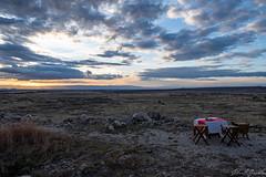 Sundowners in Randilen WMA - Tarangire National Park (Duma Overland) Tags: sundowner africa tanzania randelin wma land rover sunset sundowners