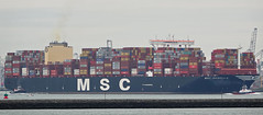 SMIT CHEETAH , MSC ISABELLA (2019) & BEAGLE (kees torn) Tags: mscisabella containerschepen tug bolugatowage smitcheetah beagle hoekvanholland europoort beerkanaal calandkanaal