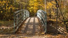 Automne, autumn - Parc de l'escarpement - Québec, Canada - 4829 (rivai56) Tags: automne autumn parcdelescarpement québec canada 4831 park parc nature sentier trail passerelle sur la rivière berger