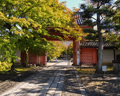 Shinnyodo gateway (Tim Ravenscroft) Tags: gate entrance path shinnyodo kyoto foliage temple trees japan hasselblad hasselbladx1d
