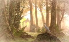 ~ ELVION ~ (willow.kwan) Tags: bird landscape 3d art digital digitalart life second secondlife kwan willow willowkwan