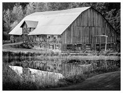 _8501069-Mr (gillesporlier) Tags: grange barn paysage landscape monochrome bnw noiretblanc nikon d850 lightroom water reflet old forest foret trees