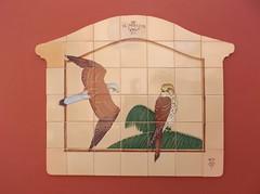DSCF1791 (rugby#9) Tags: outdoor lacaleta canaries canaryislands tenerife tiles elmirador birdsofprey