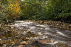 Getting there ...... (CamraMan.) Tags: geltwoods rivergelt autumn trees leaves rocks water flow brampton sonya6000 sigma16mm leepolariser ndgrad manfrotto longexposure nature cumbria ©davidliddle ©camraman