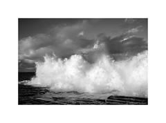 Sydney coast, 2015  #5806 (lynnb's snaps) Tags: ocean nature digital landscape waves 5d freshwater 2015 blackandwhite bw coast rocks sydney australia canon5d canonef24105mmf4lis blancoynegro monochrome blackwhite noiretblanc dramatic stormy spray bianconero biancoenero schwarzweis bianconegro