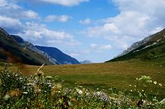 kp2019-13 (Vasily Ledovsky) Tags: sochi krasnaya polyana krasnodar krai voigtlander bessar canon ltm l39 m39 50mm 5018 f18 national park hiking
