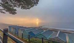 Foglight Sun (nicklucas2) Tags: seascape beach mist sea sand seaside solent seaweed wave groyne avonbeach mudeford dorset sun