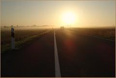 Der morgentliche ... (der bischheimer) Tags: lausitz nebel morgennebel morgens morning strase derbischheimer