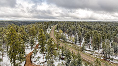 From The Top (garshna) Tags: highway67 arizona northrimparkway trees lookout tower highway landscape clouds snow stormy wind kaibabnationalforest